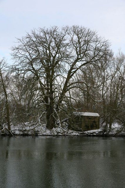 Pillbox by the tree