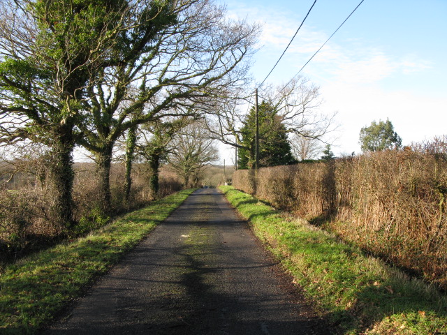 Looking W along Mill Lane