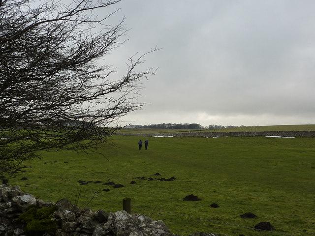 On the Limestone Way