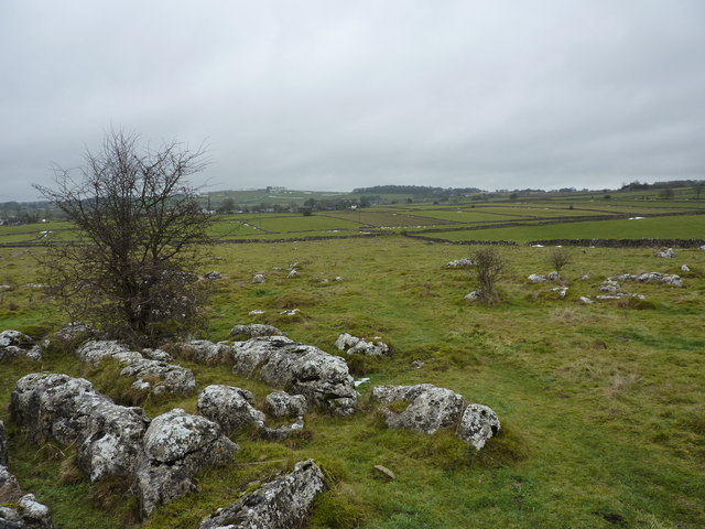 Limestone outcrops in field south of Biggin