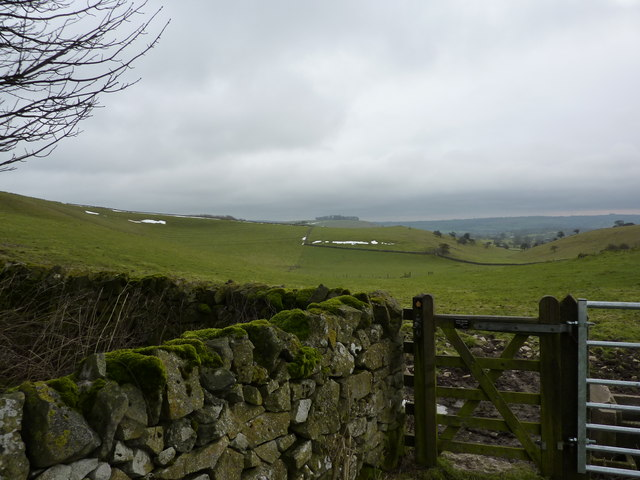 Looking down into Eaton Dale
