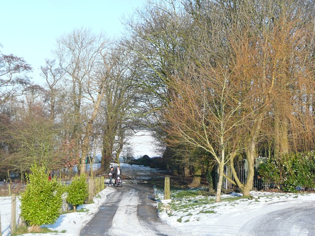 Driveway to the lower car park, Thurnham Hall
