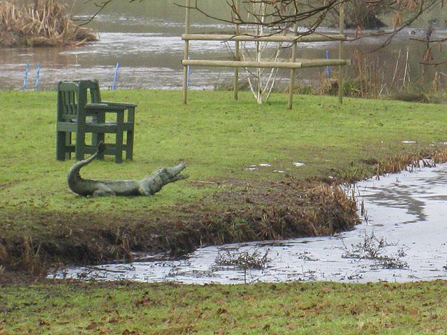 Herefordshire crocodile
