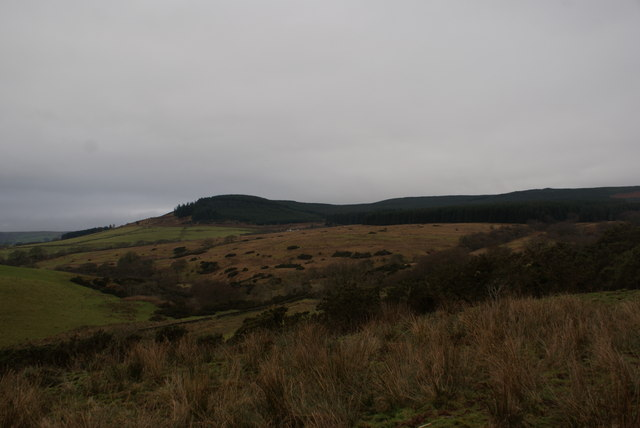 Looking across moorland to the Forest of Ae