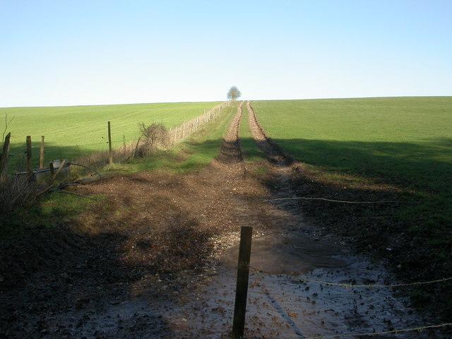 Boulsbury, farm track