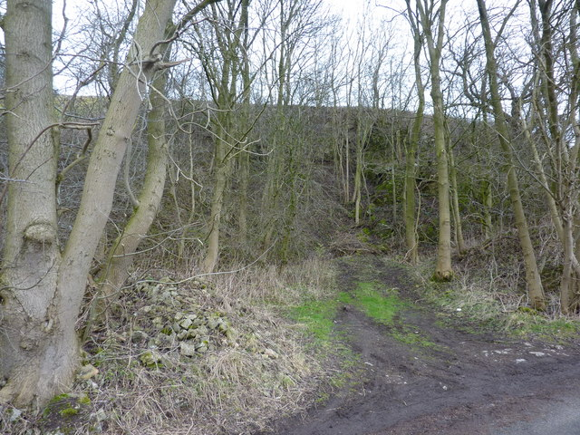 A small disused quarry