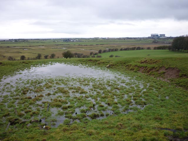 Small marsh/pool, Point 31m