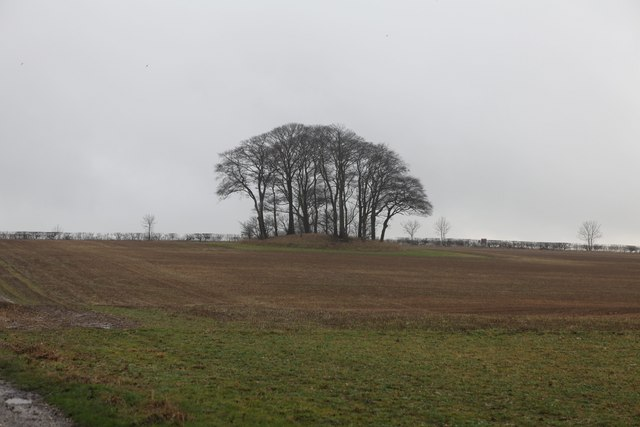 Tumulus near Junction of Water Lane and A166