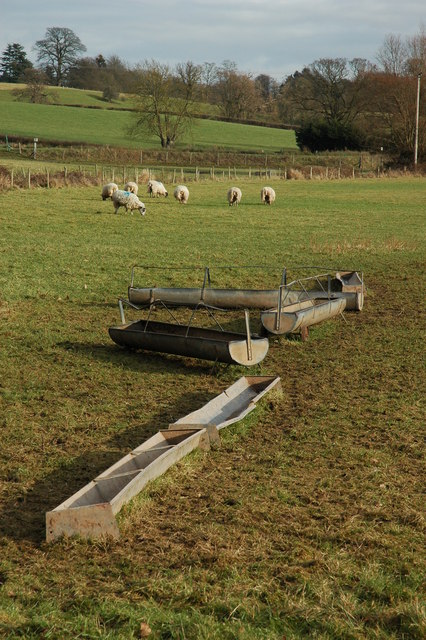 Sheep troughs, Otherton Farm