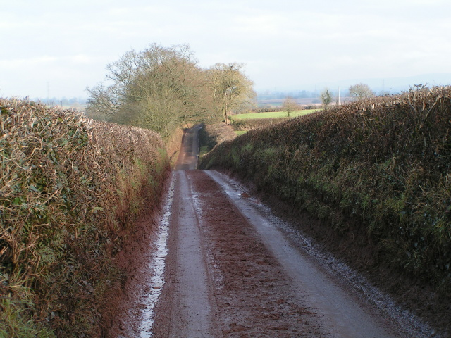 Muddy country lane