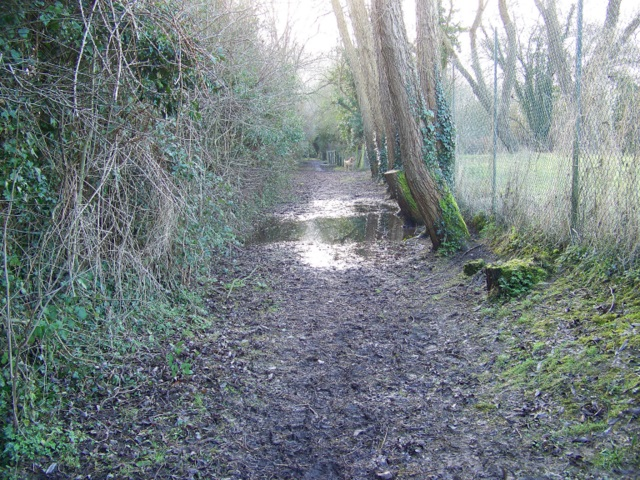 Footpath to Croucheston