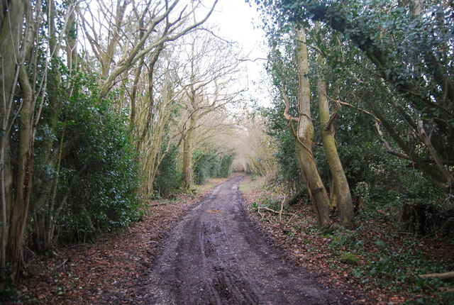 Bridleway NE of Pix Hall Farm