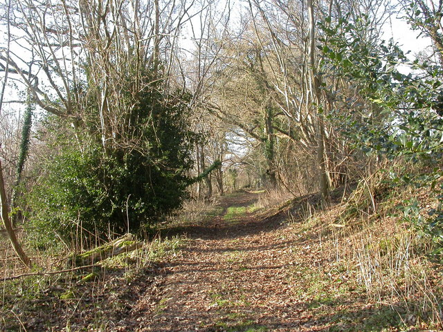 Boveridge, footpath