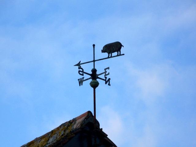 Weather vane, Chilmark