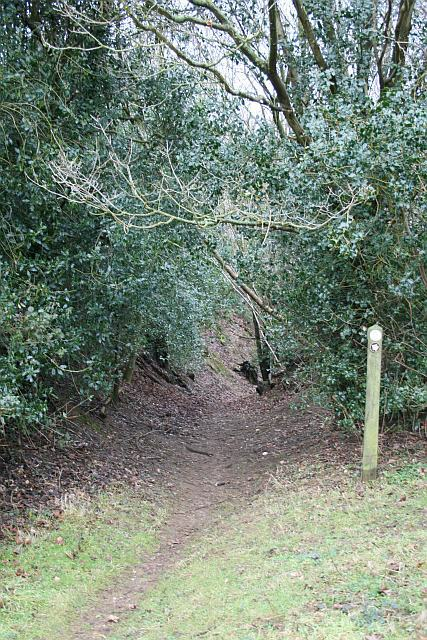 Bridleway to Compton