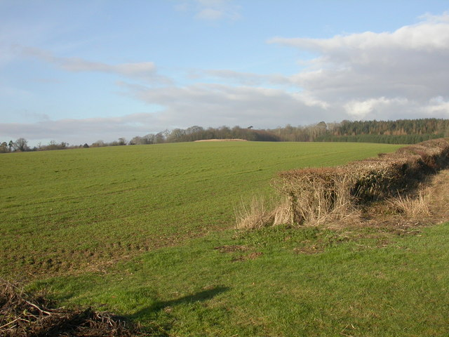 Boveridge, arable land