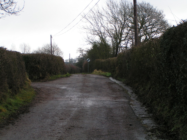 Lane heading out of Wimple