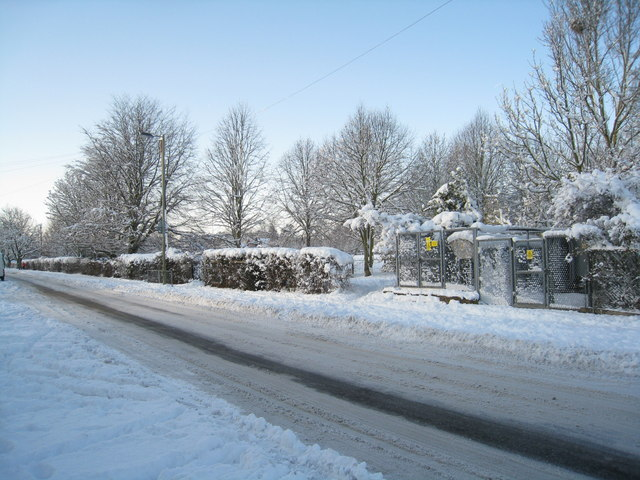 Queen Mary Avenue in winter