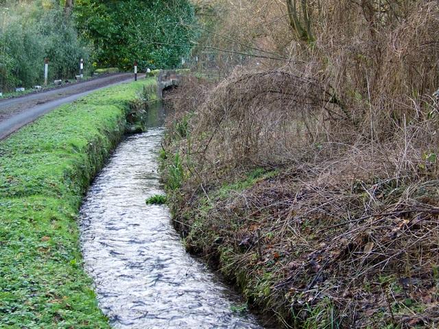 Stream, Chilmark