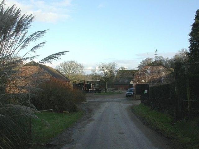 Boveridge Farm