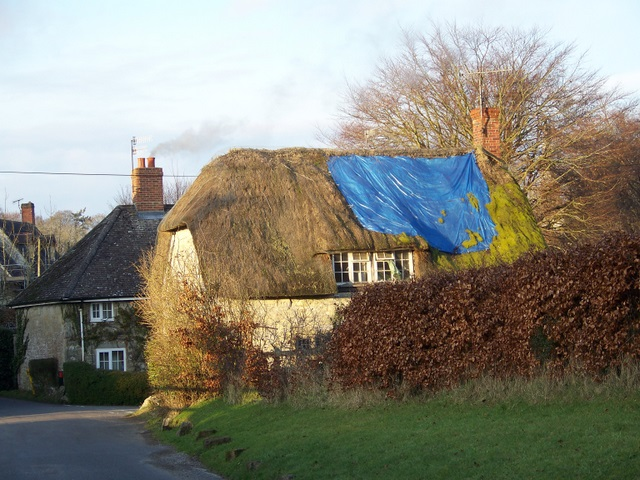 A patch on the thatch, Chilmark