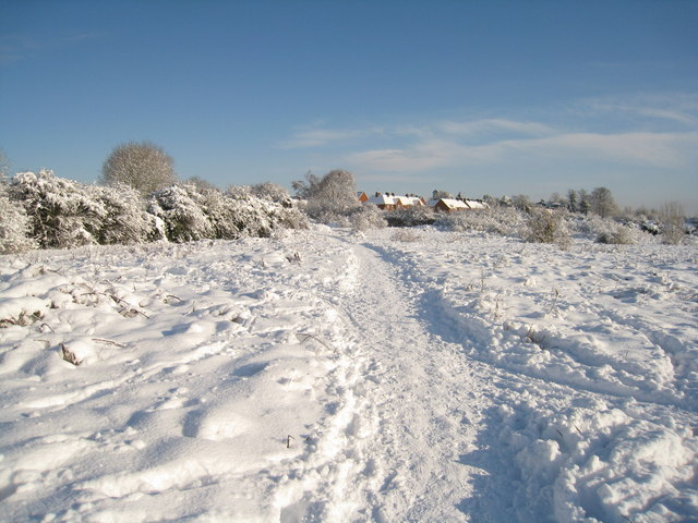 A clear path in the snow