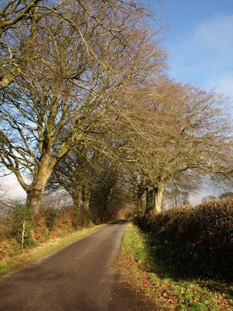 Downlands Lane