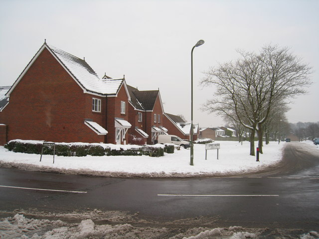 Lefroy Avenue / Vivian Road