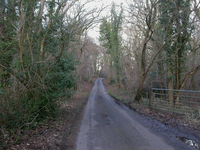 Martin Wood, road