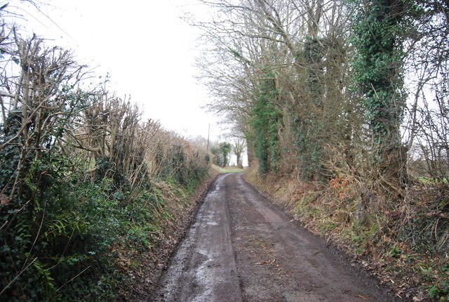 Bridleway north of Tanyard Farm