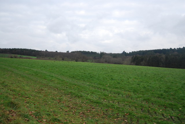 Large arable field north of Tanyard Farm