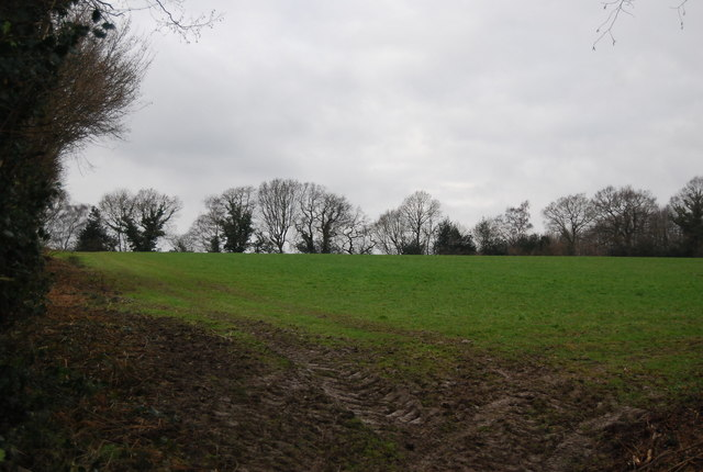 Field west of the bridleway north of Tanyard Farm