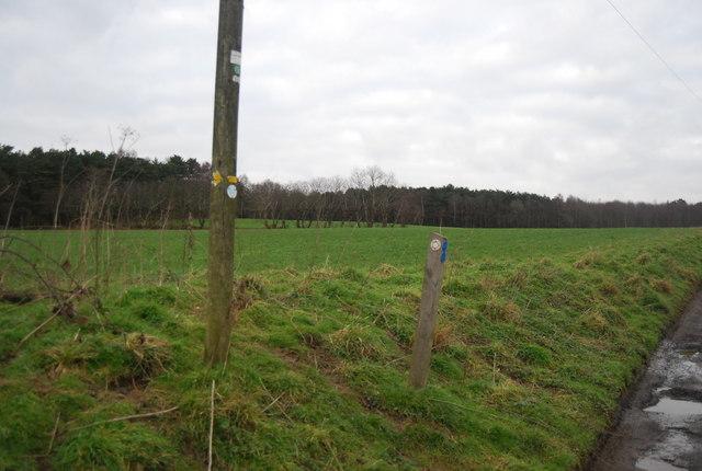 Bridleway marker