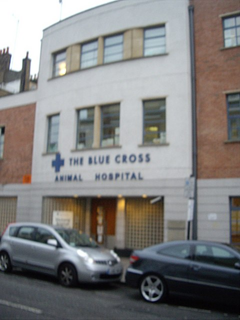 The Blue Cross animal hospital