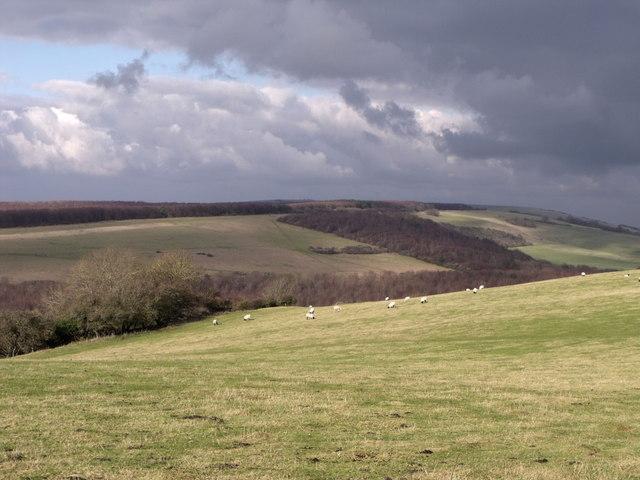 Downland scene in Winter near Friston, East Sussex