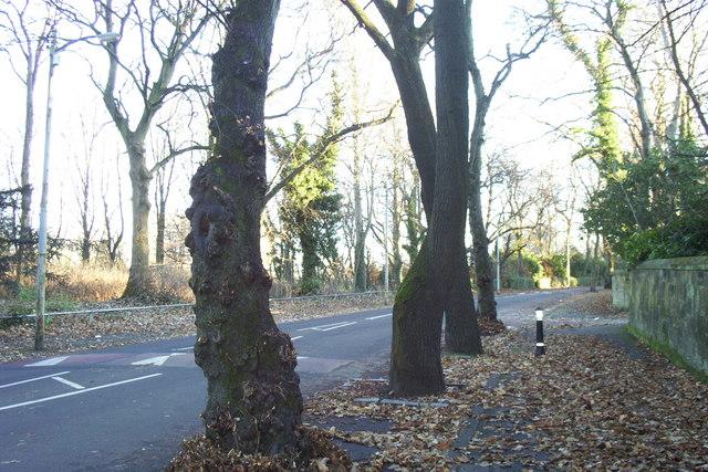 Urrdale Road, Dumbreck