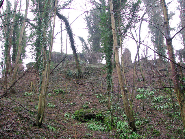 The ruins of St Andrew's church viewed from Whitlingham Lane
