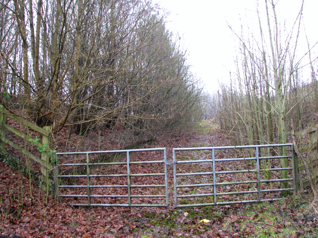 Gated track south of Whitlingham Lane