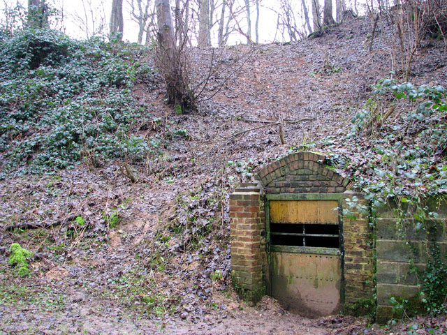 A woodland walk in Whitlingham Country Park - disused lime kiln