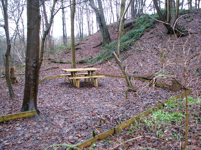 A woodland walk in Whitlingham Country Park - picnic table