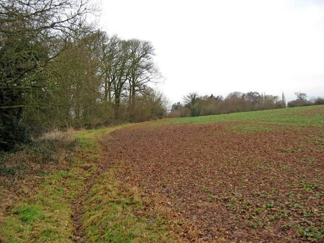 Field viewed from the Wychavon Way
