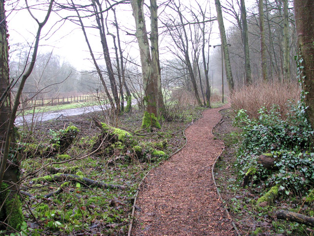 A woodland walk in Whitlingham Country Park - path beside road