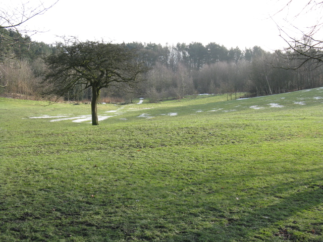 Tandle Hill Park (2)