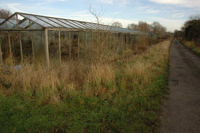 Old greenhouses near Badsey