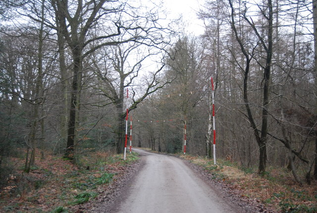 Warning posts, Park Lane, Bedgebury Forest