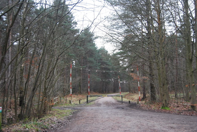 Barrier & warning poles on a forest track, Bedgebury Forest