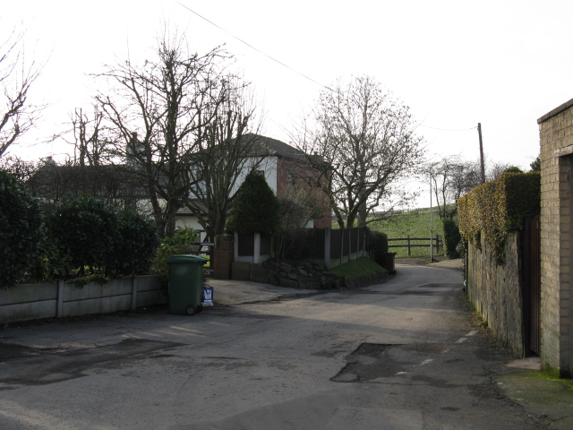 Lane At Healds Green, Chadderton