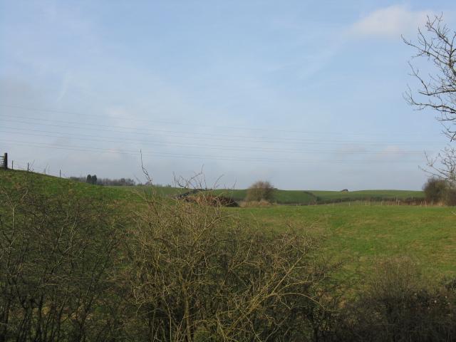 Fields Near Healds Green