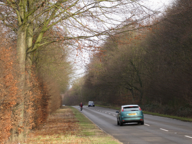 Leicester Lane A445 by Waverley Wood