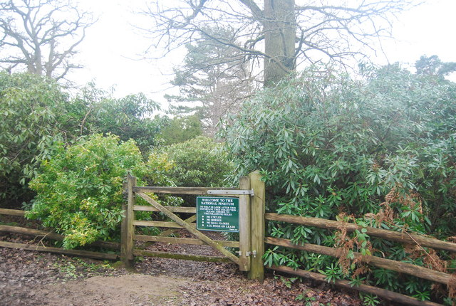 An entrance to Bedgebury Pinetum
